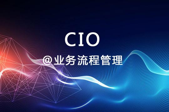 CIO是业务流程管理主要推动者