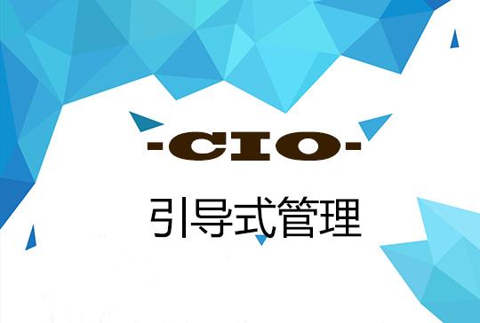 CIO管理:引导式管理