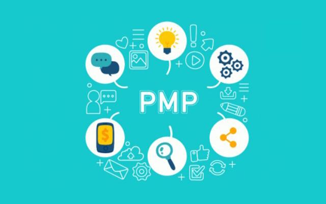 pMP项目管理五个阶段的核心流程